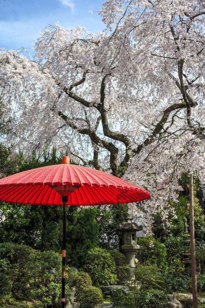 japaneseumbrella