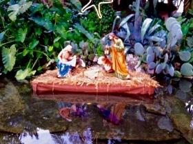 Even the zoo exhibits had nativity scenes!