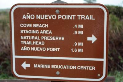 Ano Nuevo Trail
