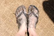 Baked on mud!