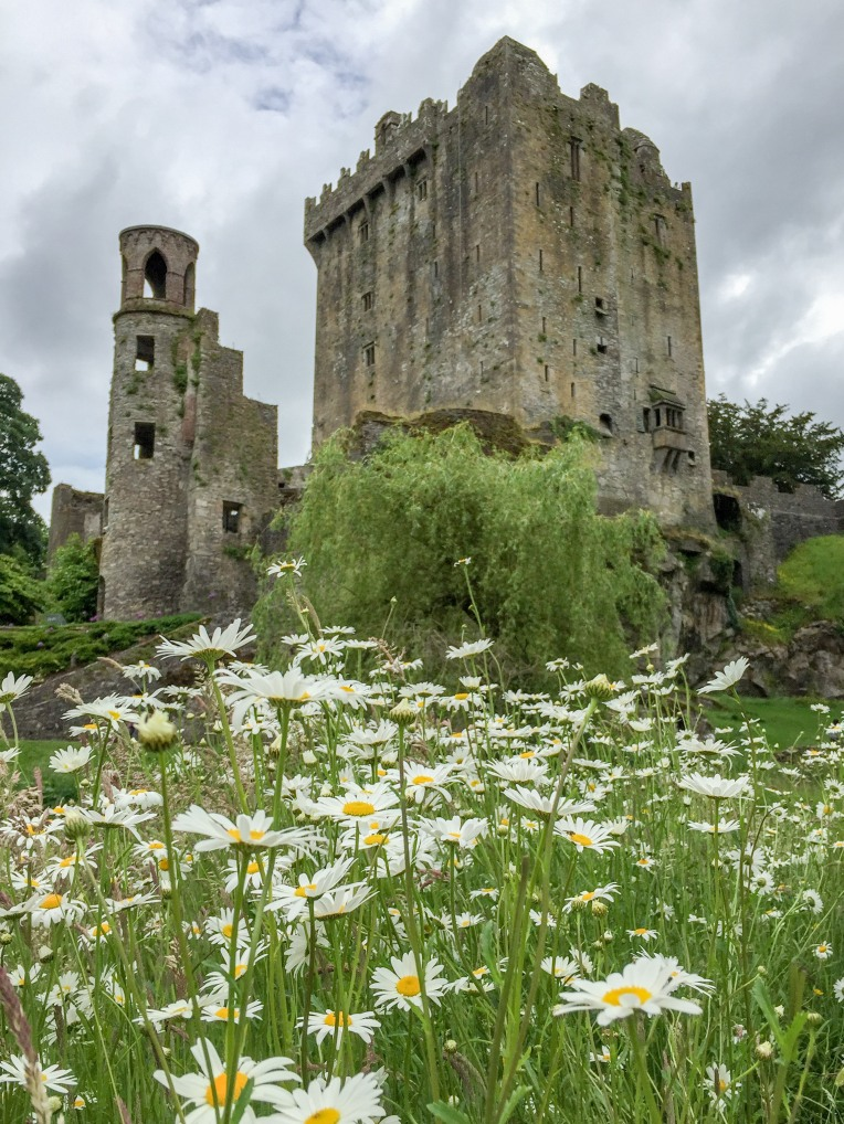 Cork Blarney Castle