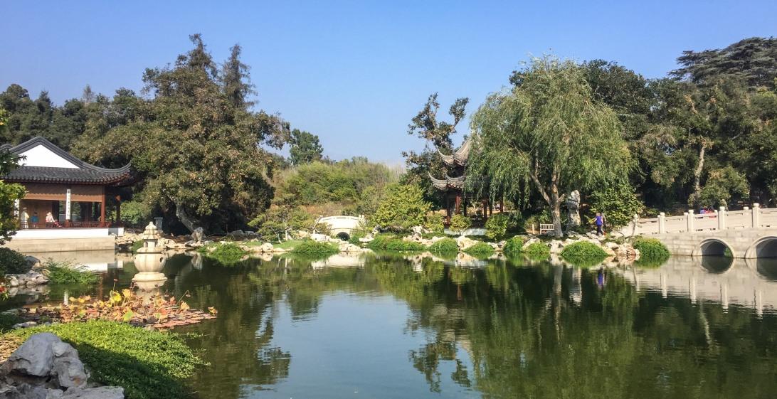 SoCal Adventures: Huntington Botanical Gardens