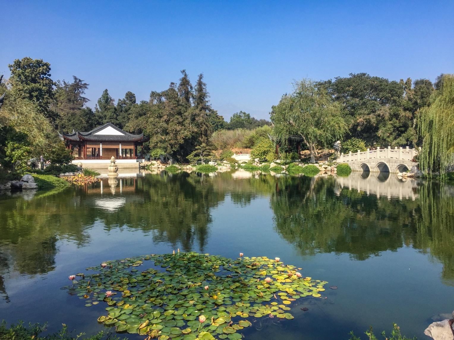 huntington-chinese-garden-9100