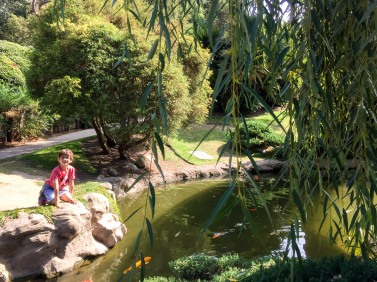 huntington-japanese-garden-9068