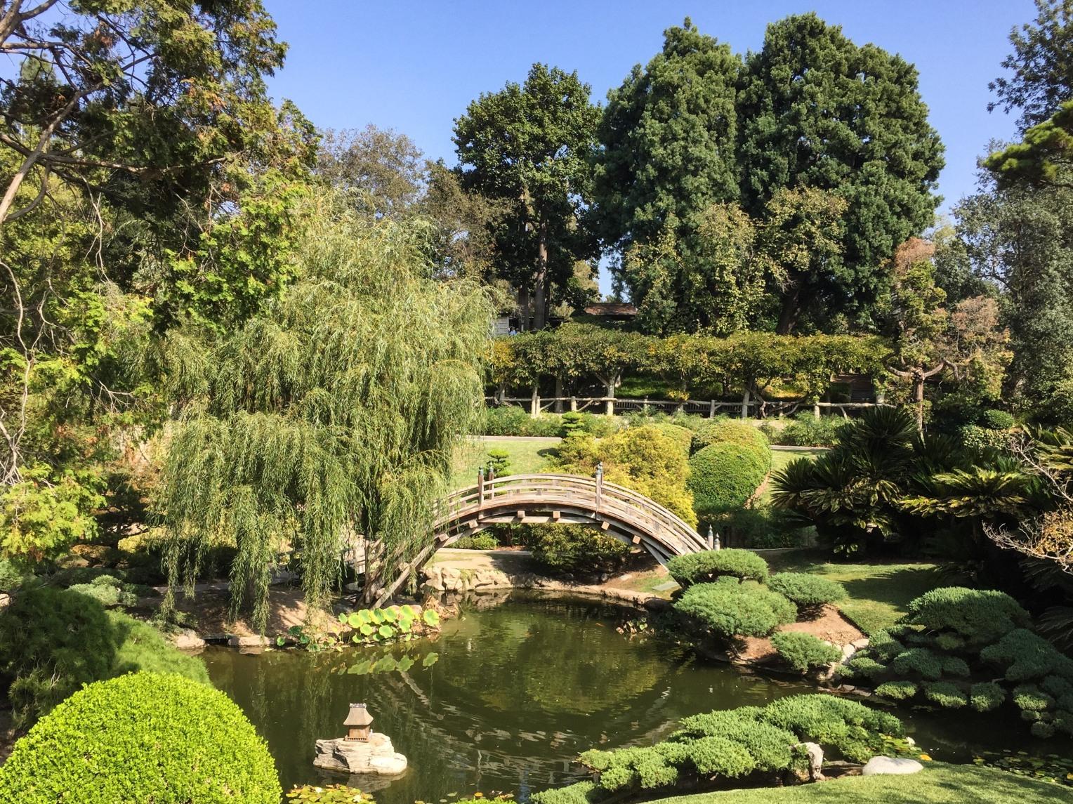 huntington-japanese-garden-9072