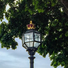 #royalstreetlight