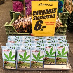 #cannabisstarterkit