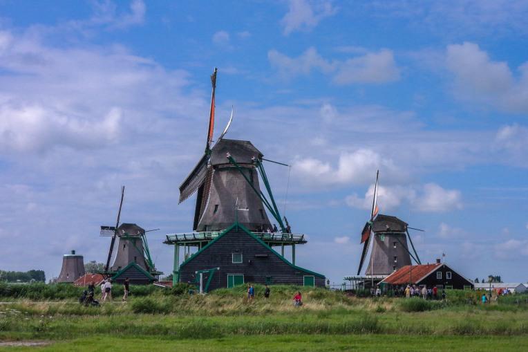 #windmill