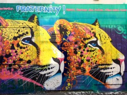 San Francisco Mission District Street Art